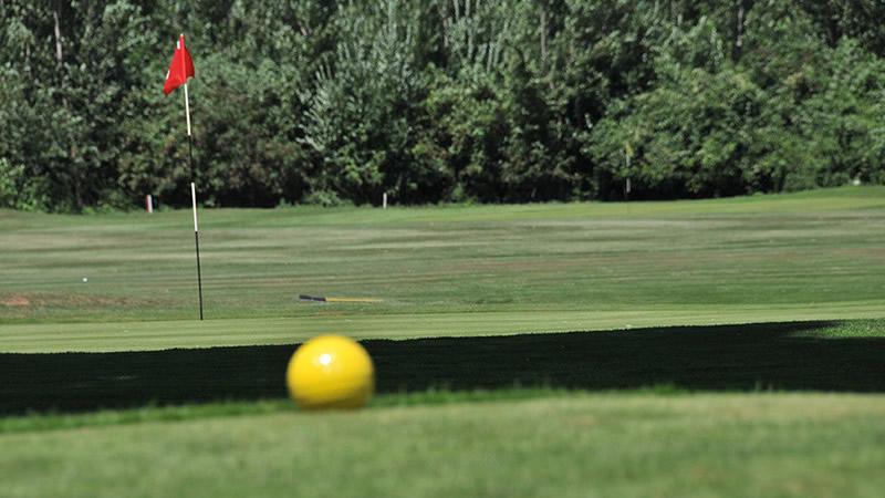 Swedish Chamber Open Golf Tournament